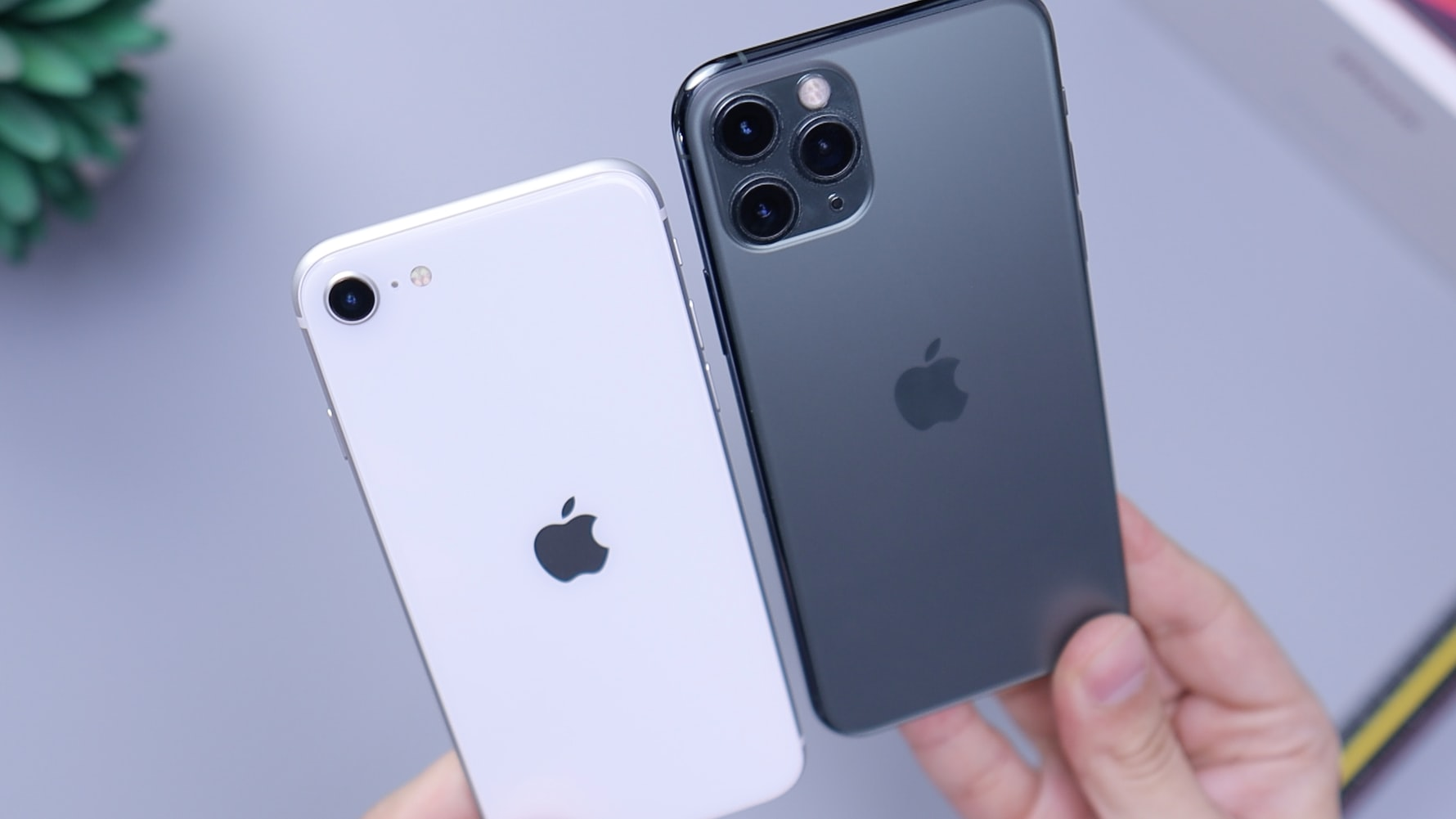 A white iPhone SE and grey iPhone 11 Pro